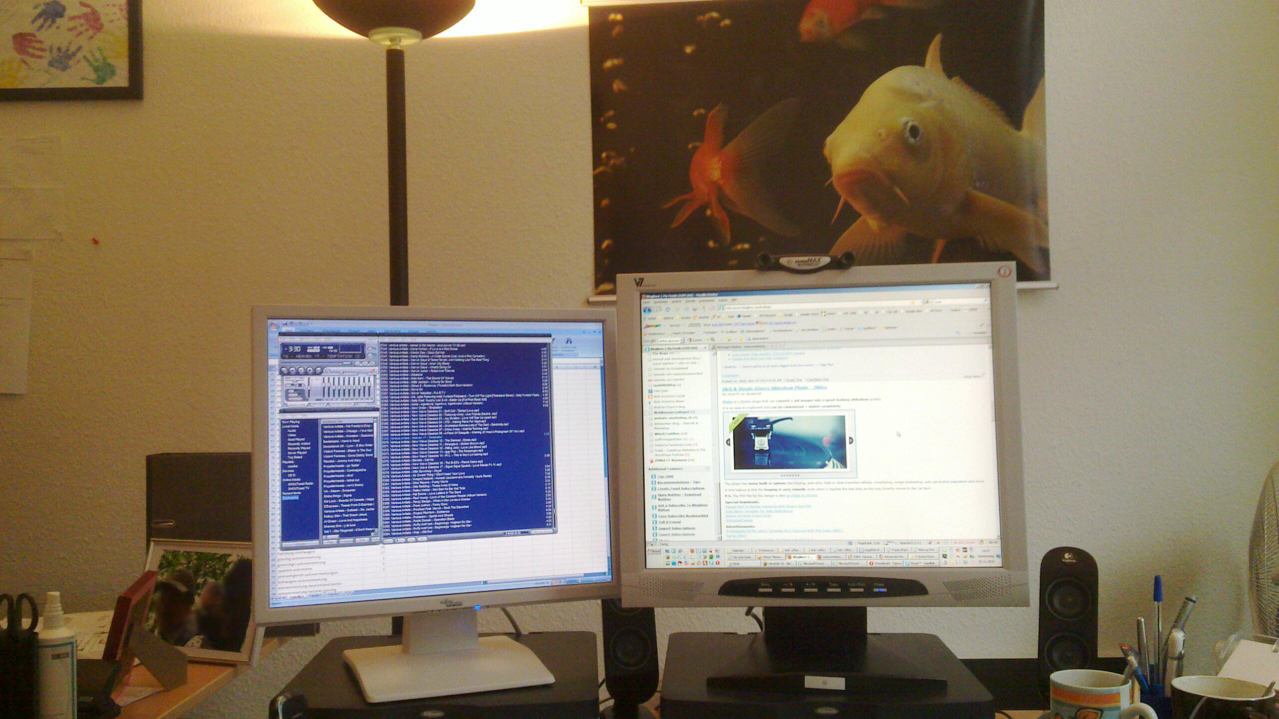 Spiegelkarpfen aquariumlog by kamillo koi und aquaristik for Koi und goldfische zusammen